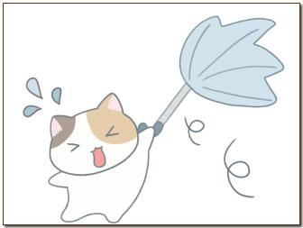 台風9号10号